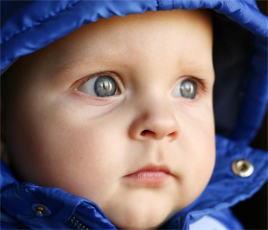 Desarrollo del bebé: 12 meses