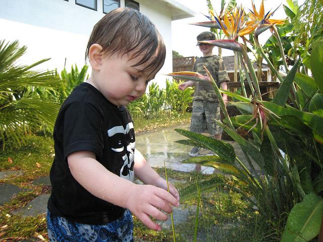 Características del desarrollo de los niños de 2 a 3 años I