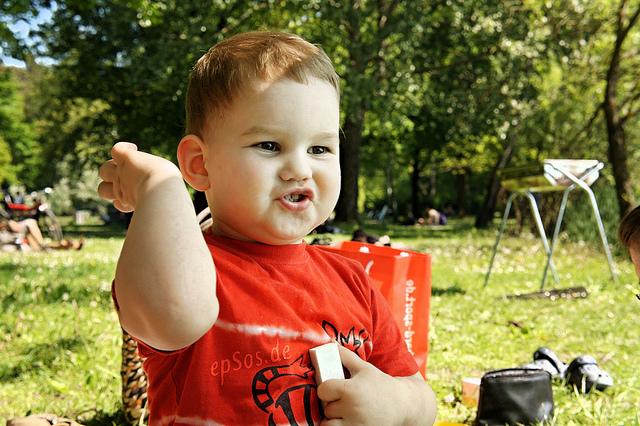 Características del desarrollo de los niños de 2 a 3 años II