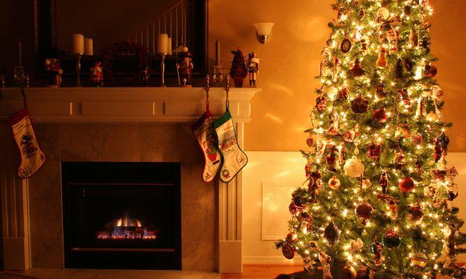 Cómo escoger un árbol de Navidad para la casa