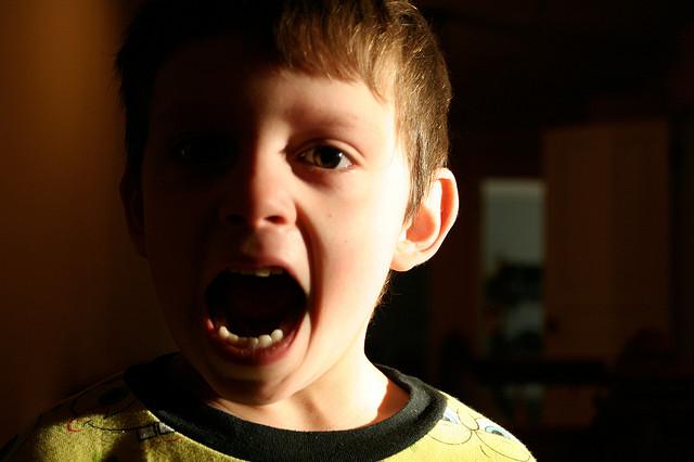 Los gritos en casa